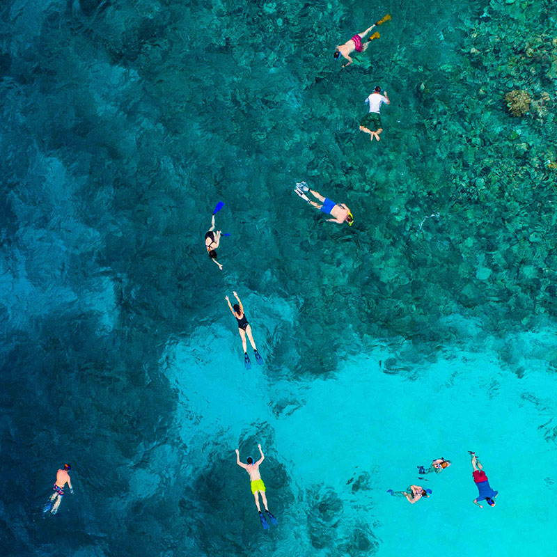 The best places to snorkel in Cabo