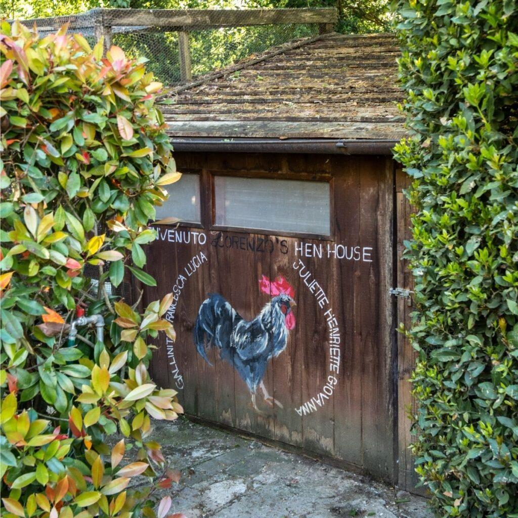 chicken coop at luxury tuscany vacation villa