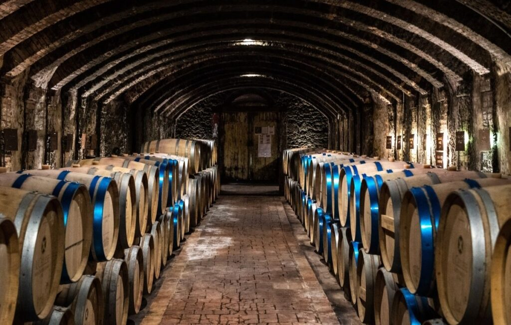 wine cellar of Il Cellese